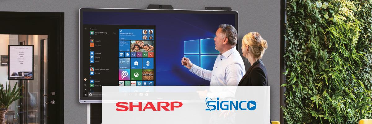 Signco - Sharp Windows collaboration display